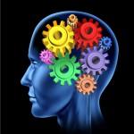 intelligence_brain